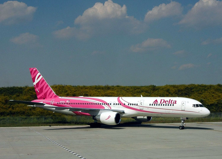 Pink Breast Caner 757 Jet